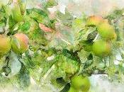 Bajar peso vinagre manzana