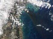 Científicos confirman costa Japón desplazó metros terremoto