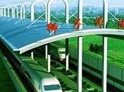 Finaliza construcción primer túnel ferroviario submarino China