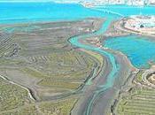 Histórica marea Cádiz