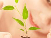 España presentará estrategia desarrollo sostenible 2018