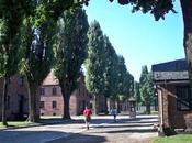 baño realidad: Visita campos concentración Auschwitz