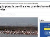 persistente sequía pone peligro gran número humedales españoles