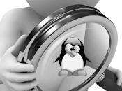 Cómo monitorizar eventos directorio tiempo real inotify Linux