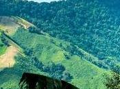 Tailandia mayo
