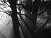 Quinta Dimensión Espiritual Cómo Podemos Acceder Ella Forma Plena