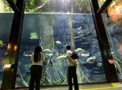 Parque Explora Medellín, experiencia sensorial