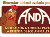 explotación animal animalista