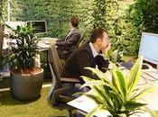 ideas ecológicas para implementar lugar trabajo