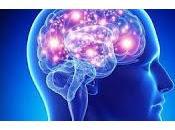 Establecen Vínculos entre Características Físicas Salud Cerebro