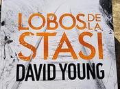 Lobos Stasi, David Young