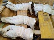juzgado abre diligencias aparición cadáveres fosa franquista