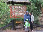 Bosque Arrayanes península Quetrihué