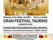 Festival benéfico Toledo