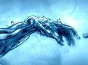 Transhumanizando organizaciones. evolución humanismo.