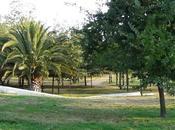 Fotografiando Parque Ohiggins
