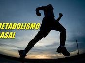 Metabolismo Basal Definición
