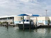 Visita Clearwater Marine Aquarium