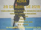 Curso Kobudo karate Adra