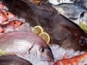 vitaminas minerales pescados