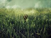 Netflix adaptará tall grass', relato Stephen King Hill