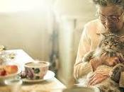 Mascotas residencias, terapia aporta felicidad mayores