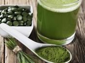 Chlorella pequeña alga contra toxinas cuerpo