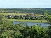 Safari reservas privadas Cabo Este