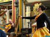 Bailes Tradicionales Argetina