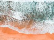 playa salón