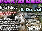 """Jornada puertas abiertas sonrisa animal"""". Julio."""
