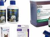 Medicamento para eliminar garrapatas perros: pastillas, shampoos, pipetas, collares