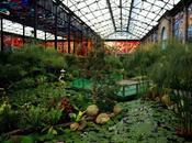 Invita secretaría cultura visitar cosmovitral jardín botánico toluca