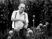 Charles Bukowski hacés mientras matás moscas