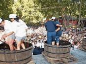 Fiestas vendimia 2011