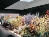 Peter Zumthor Unveils Sheltered Garden 2011 Serpentine Pavilion Inhabitat Green Design Will Save World