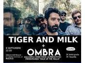 Ombra Tiger Milk Costello Club