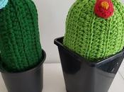 Gemeliers cactus