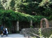 Excursión Font Budellera carrito bebé Serra Collserola