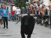 toro cuerda carcabuey ratifica auge festejos populares