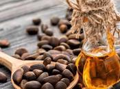 Beneficios aceite esencial Cedro