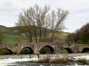 Puente Trinidad-Arre-Navarra