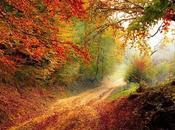 Recomendaciones para otoño saludable