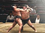 Basho Torneo Sumo Otoño Tokyo