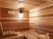Conoce todos beneficios sauna. secreto nórdico