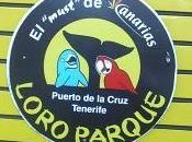 Loro Parque: Puerto Cruz (Tenerife)