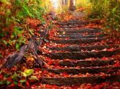 estos días otoño