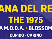 2019 arranca: Lana Rey, 1975 Blossoms primeros nombres confirmados.
