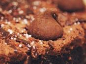 Tarta brownie mousse chocolate