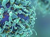 Detener movimiento células tumorales detiene propagación cáncer